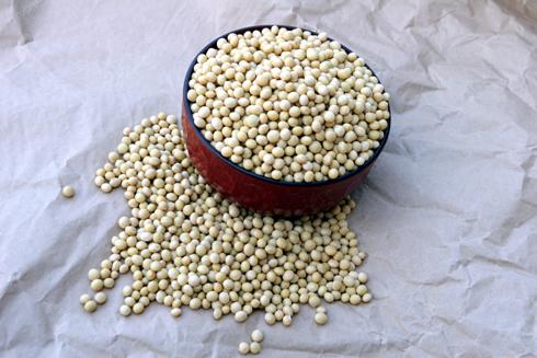 2009年収穫の3代目幸運の大豆